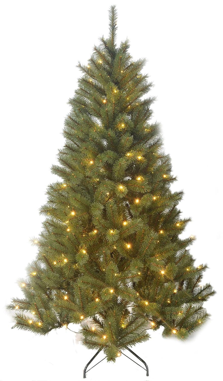Beleuchtete Weihnachtsbäume