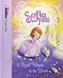 Amazon.com: World of Reading: Sofia the First The Missing