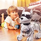 Remote Control Robot Dog Toy, Robots for kids, Rc
