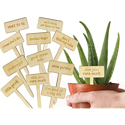 Wonder Home Supply Funny Stakes for Plants Markings Labels Gift for Plant Lovers and Gardeners: Garden & Outdoor
