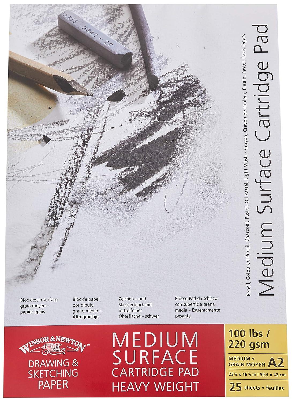 Winsor& Newton - Blocco Carta Grana Media Incollato - 220 Gr - A2-25 Fogli Colart WN6689732