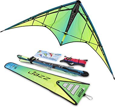 Fishing Kite High Wind Caught in Flight Mini