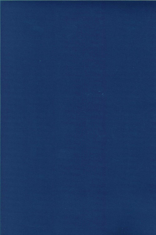 Tenda da Sole da Esterno per Balcone in Tessuto Resistente Misura cm 200x295 in 100/% Poliestere con Anelli Dis 5 Blu