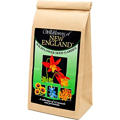 New England Wildflower Seed Mix - A Beautiful Collection of Twelve annuals and perennials - Enjoy The Natural Beauty of New England Flowers in Your own Home Garden : Garden & Outdoor