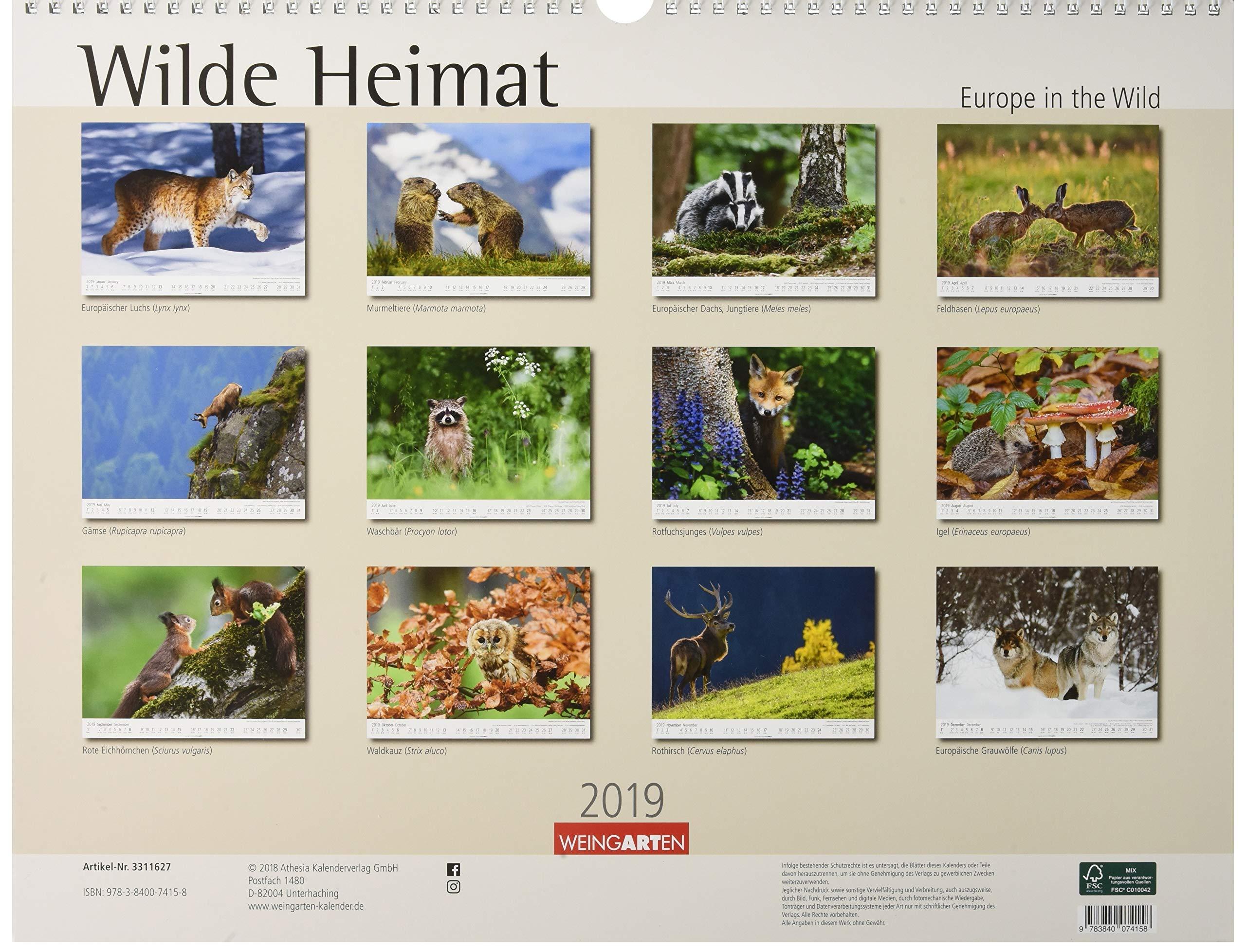 Wilde Heimat Kalender 2019 Amazon De Weingarten Bucher