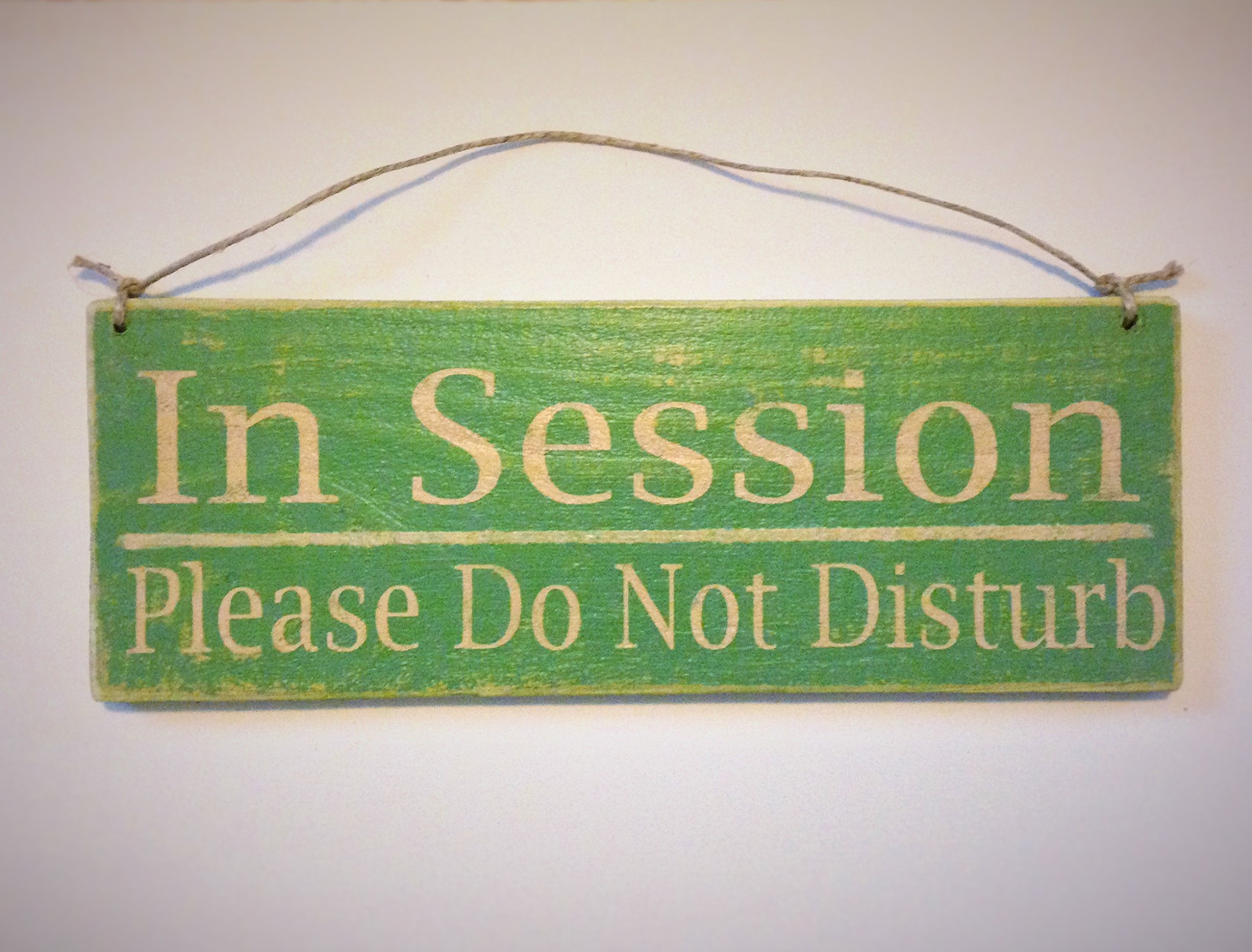 In Session Please Do Not Disturb 12x4 (Choose Color) Custom Rustic Salon Spa Office Meeting Wood Welcome Wood Sign