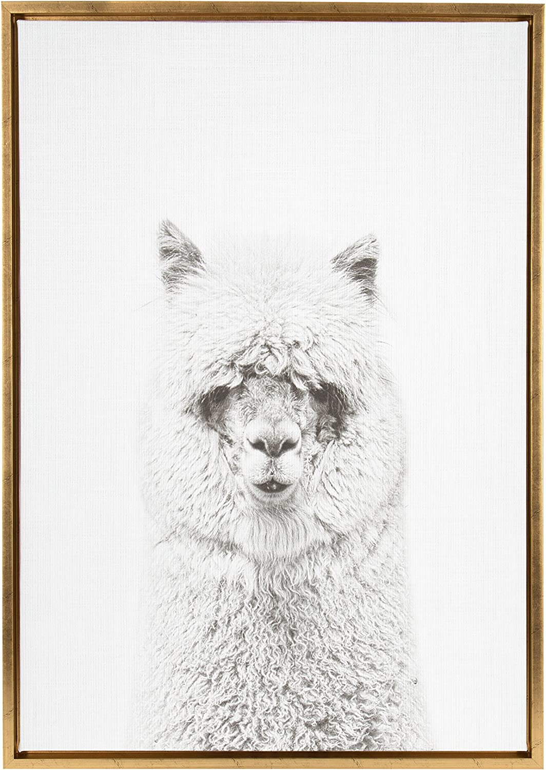 Kate and Laurel - Sylvie Hairy Alpaca Black and White Animal Portrait Framed Canvas Wall Art by Simon Te Tai, Gold 23x33