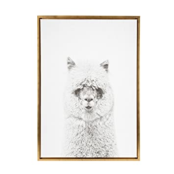 Amazoncom Kate And Laurel Sylvie Hairy Alpaca Black And White