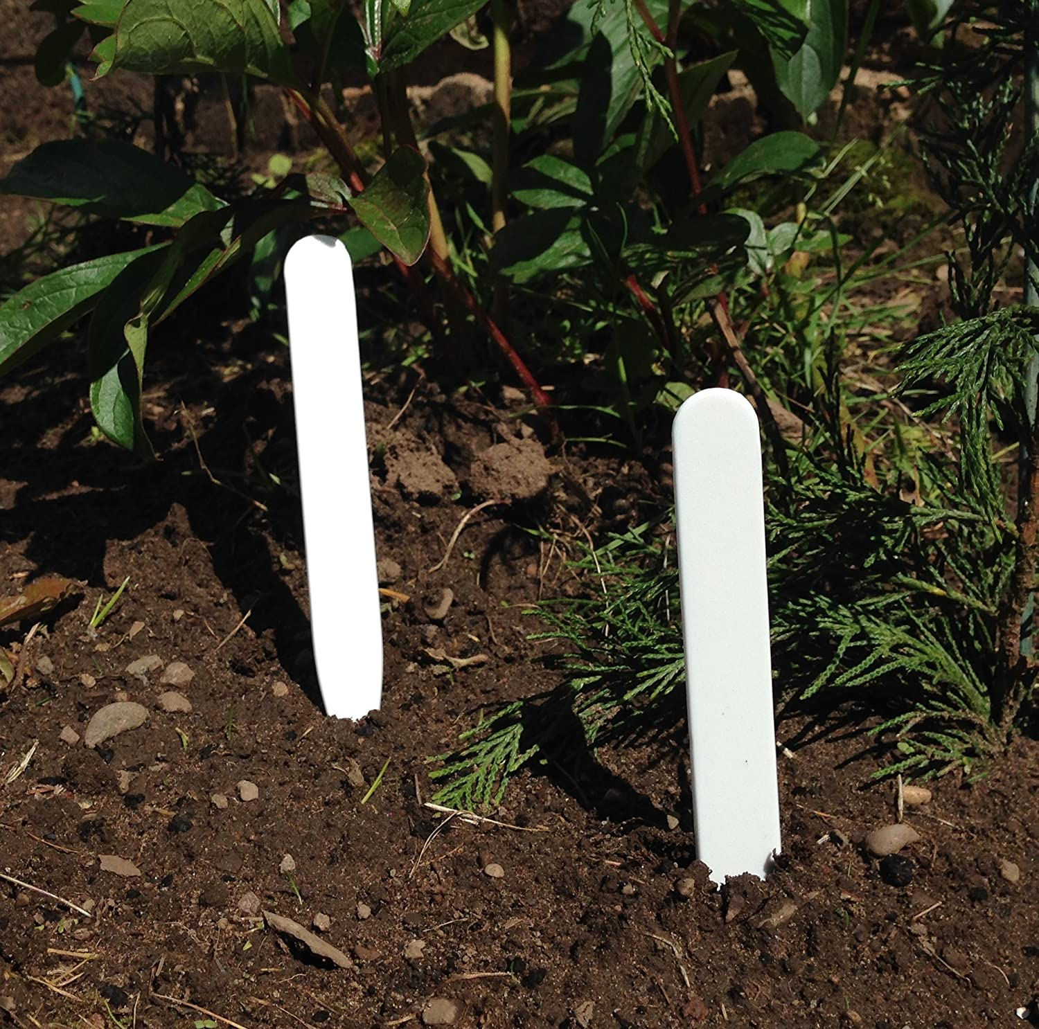 Natural Slate Garden Bush Plant Markers Label Tag Pointed Stakes Herb Gift