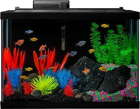 Glofish 20-Gallon Fish Tank Kit