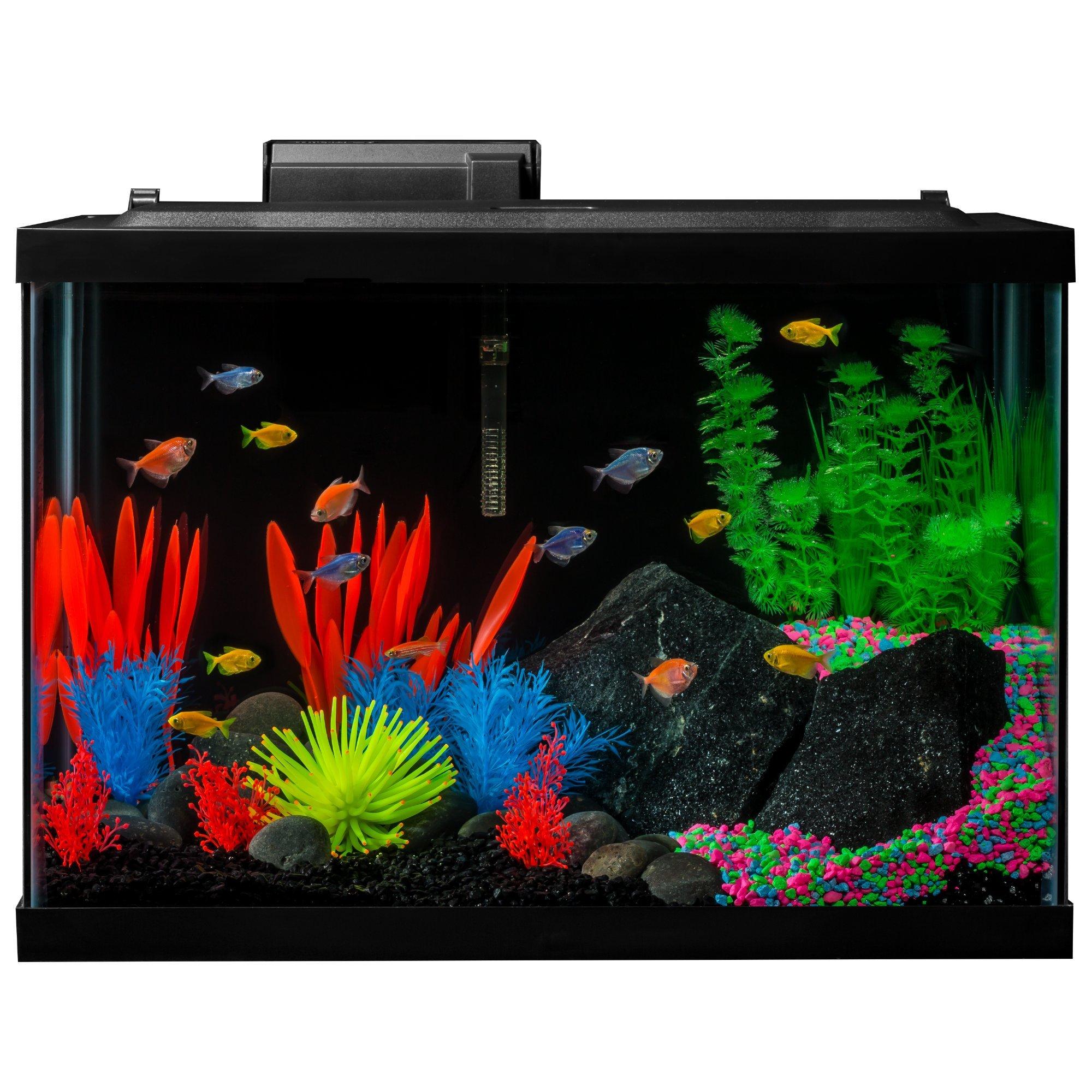 GloFish 20 Gallon Aquarium Kit with LED Lights, Decor Heater and Filter by GloFish