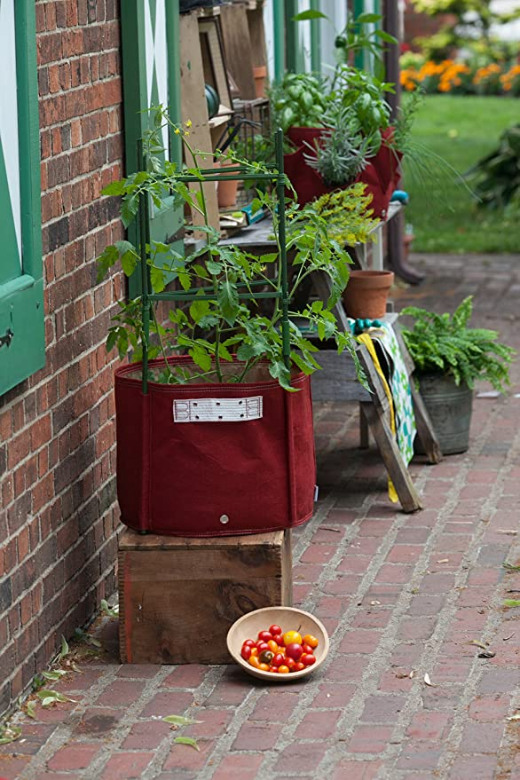 Bloem Tomate Tela Maceta Bolsa, 15 Gallon, Unión Rojo: Amazon.es ...