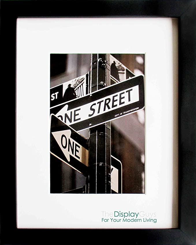 Amazon.com - The Display Guys~ 16x20 Inch matte Black Picture Frame ...