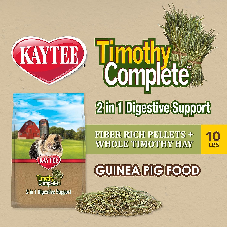 Kaytee Guinea Pig Food, Multiple Sizes & Flavors