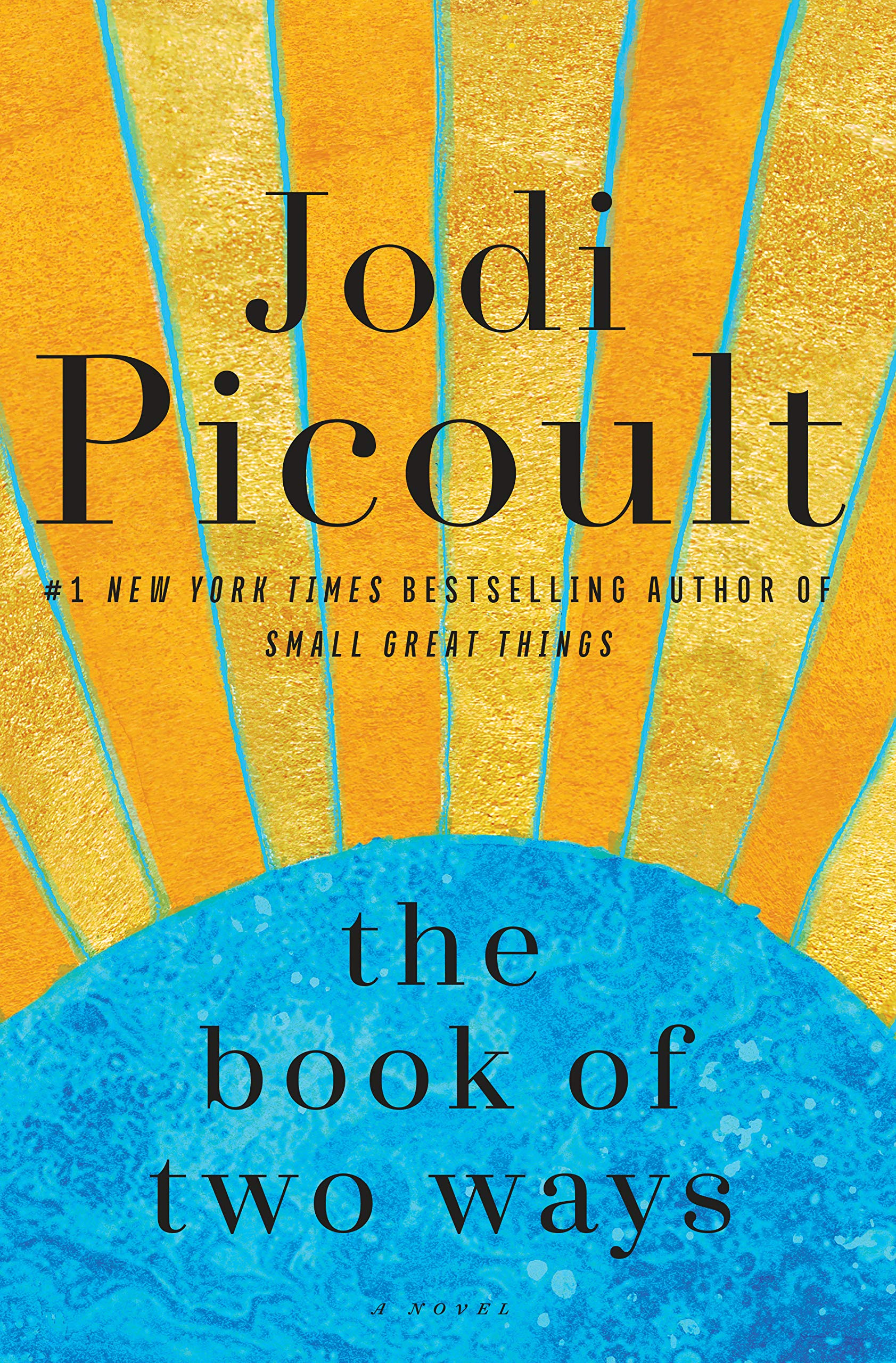 The Book of Two Ways: A Novel: Picoult, Jodi: 9781984818355: Amazon.com:  Books