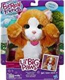 Hasbro A9084EU4 - FurReal Friends Lil' Big Paws, sortiert