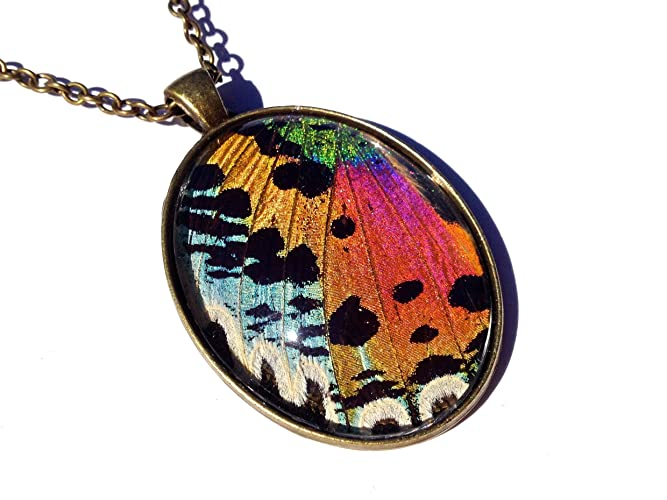 Amazon real sunset moth necklace butterfly wing pendant real sunset moth necklace butterfly wing pendant insect jewelry under magnified glass aloadofball Choice Image