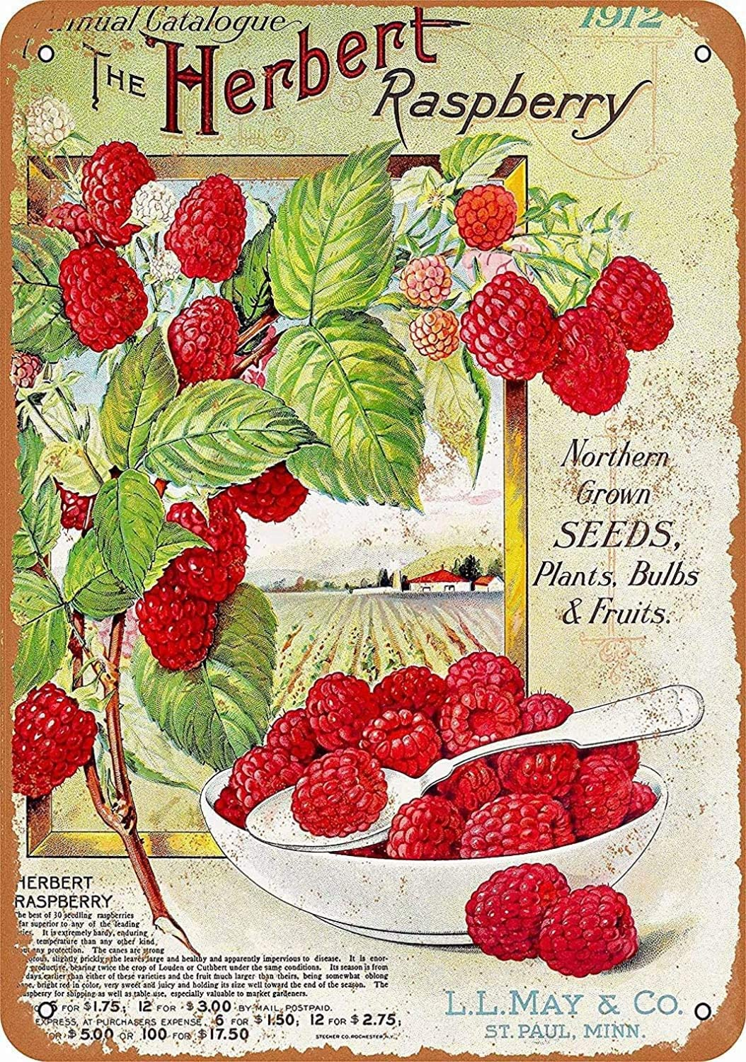XUNXINYOUBI Vintage Retro 8x12 Sign 1912 Herbert Raspberries Funny Fruits Vegetables Food Sweet Summer Wall Decor Home Decor Novlety Tin Metal Sign