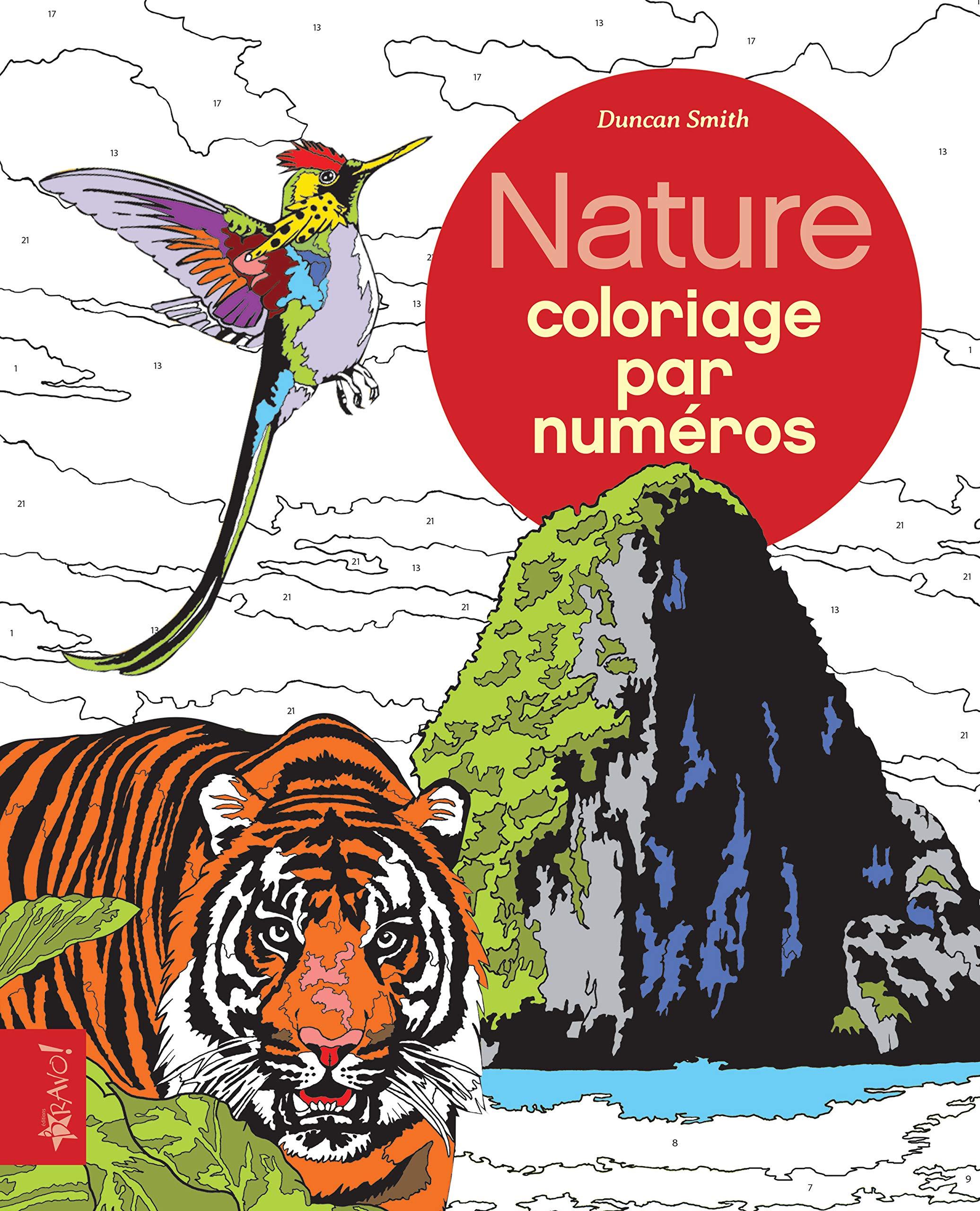 Nature Coloriage Par Numeros Amazon Fr Smith Duncan Letia Frederick Livres