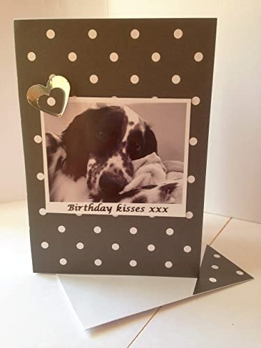 Amazon ENGLISH SETTER GREETINGS Dog Card Birthday Kisses Wishes