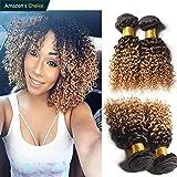 Hairitory Hair 2 Tone Ombre Curly Human Hair Weave 3 Bundles Peruvian Virgin Hair 1B/4/27 Dark Roots Blonde Hair Short Curly Weave Human Hair