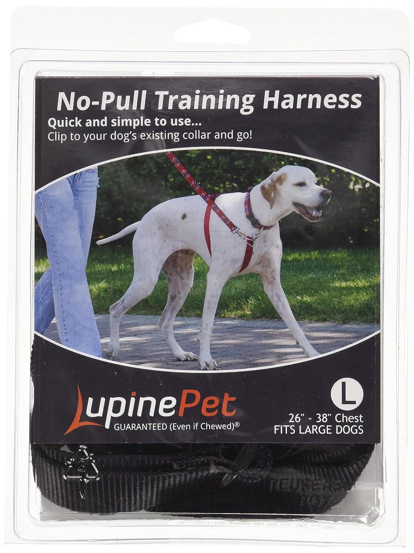 Amazon Com Lupinepet Basics 1 Black 26 38 No Pull Harness For