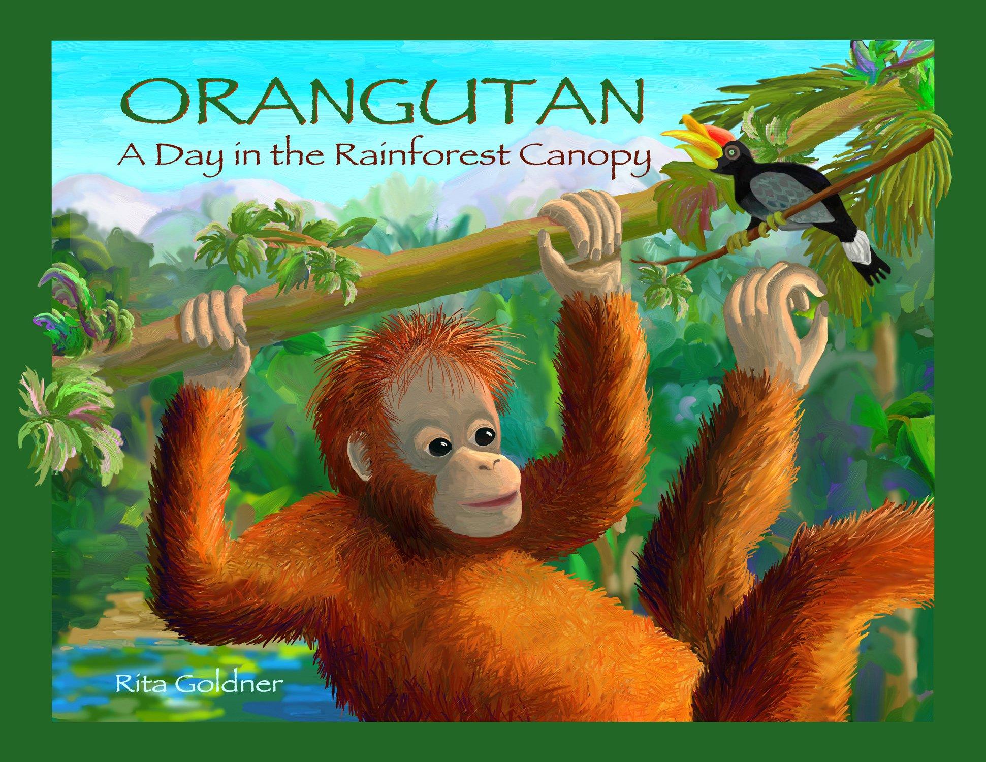 ORANGUTAN: A Day In The Rainforest Canopy by Dancing Dakini Press
