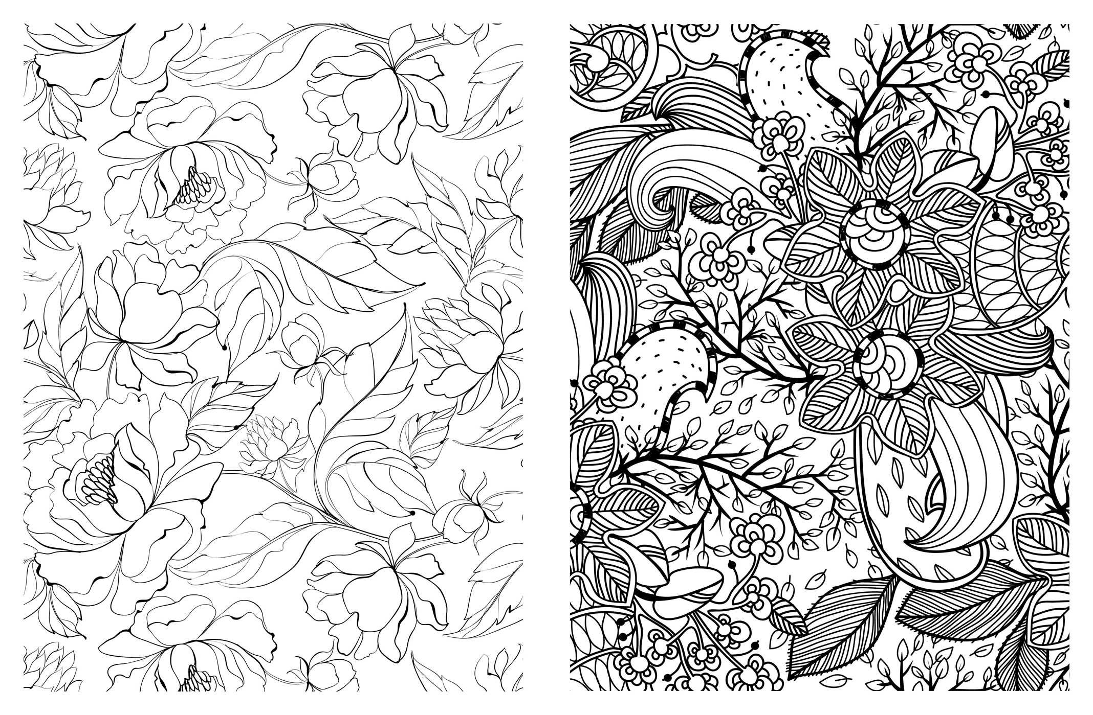 Amazon Posh Adult Coloring Book Pretty Designs for Fun