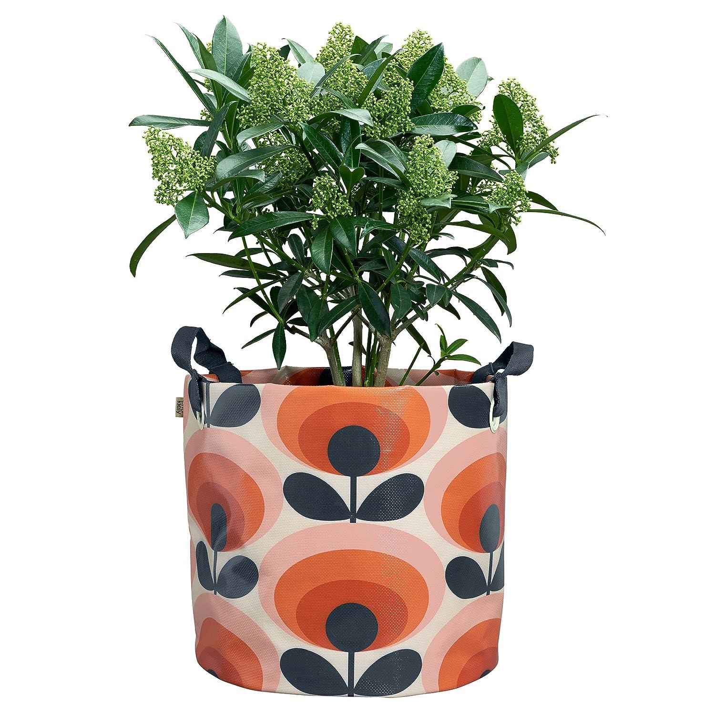 30x30x33 cm Multi-Colour Orla Kiely OK084 Large Fabric Plant Bag-70s Flower Oval Permission Design