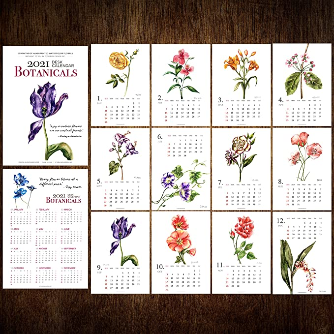Plants Art Print Home Office Decorating C11 Christmas Decoration and Gift 2021 A4 Kitchen Garden Watercolor Wall Calendar
