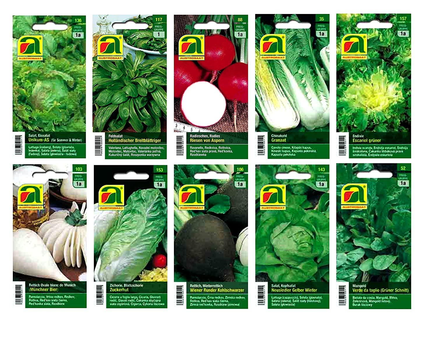 10 varieties | Vegetable seeds Assortment | suitable for beginners | robust mixture | from now on winter promotion price Austrosaat