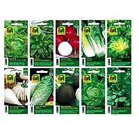 10 variétés | Assortiment de graines de légumes | adapté aux débutants | mélange robuste | à partir de maintenant le prix de promotion de l'hiver