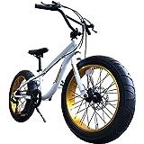 Eizer(アイゼル) 【ファットバイク】迫力の極太 ファットバイク Wディスクブレーキ NEWゴールデンアルミホイール 3D立体フレーム Shimno7Speed 20インチ20x4.1/4 FATBIKE SNOWBIKE F120 ホワイト 20インチ