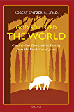 God So Loved the World: Clues to Our Transcendent Destiny from the Revelation of Jesus: 3 (Happiness, Suffering, and Transcendence)