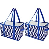 Virtual Elements Large Insulated Collapsible Reusable Grocery Bags - 2 Pack