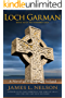 Loch Garman: A Novel of Viking Age Ireland (The Norsemen Saga Book 7)