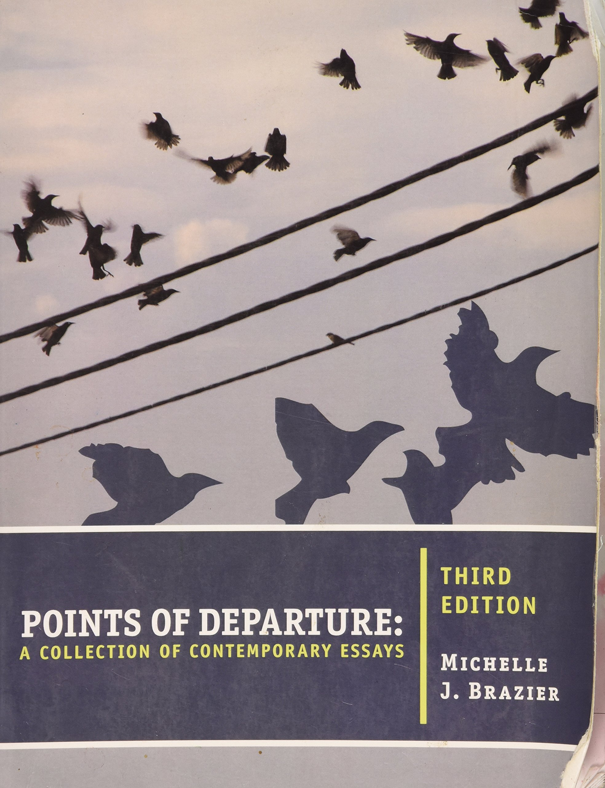 Points of departure 3rd edition michelle j brazier 9781133068020 points of departure 3rd edition michelle j brazier 9781133068020 amazon books fandeluxe Choice Image