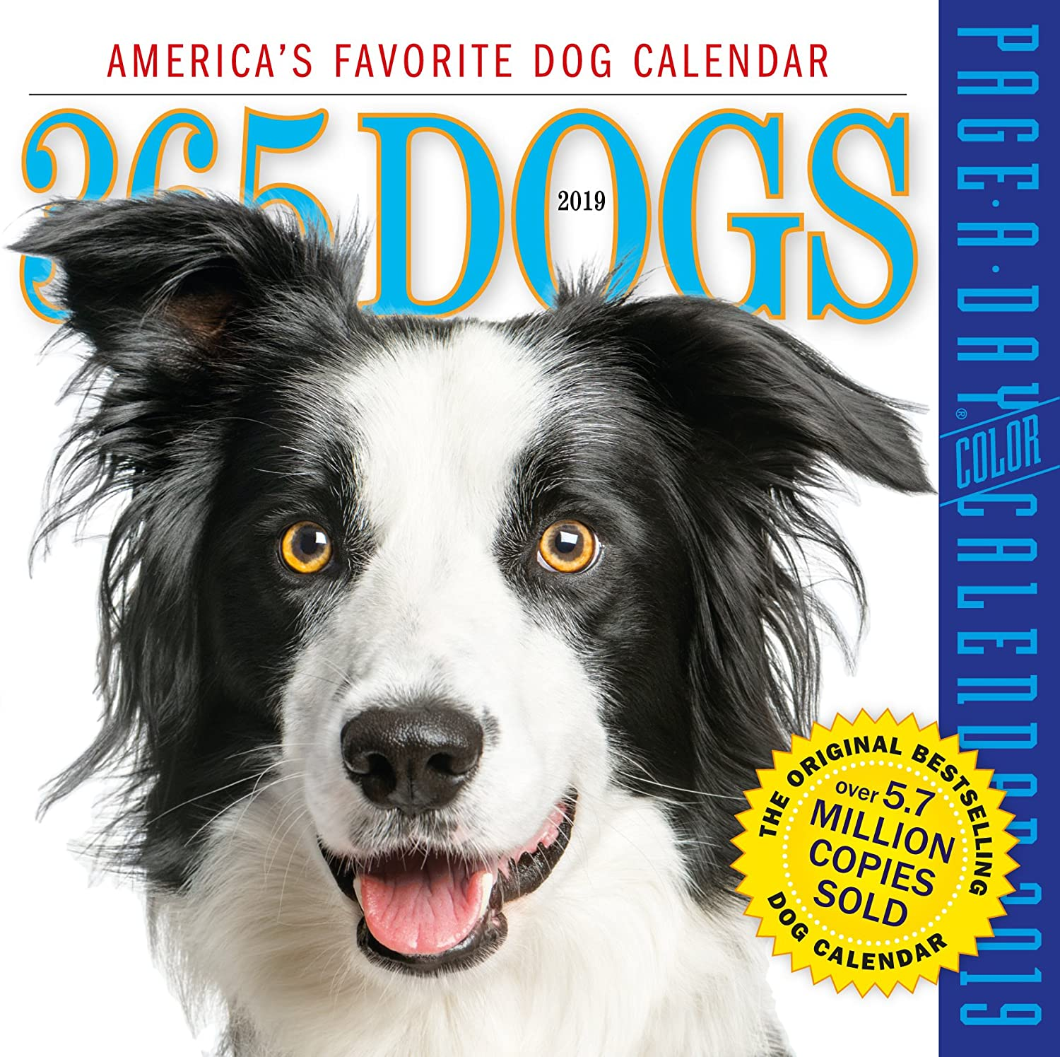 "365 Dogs Color Page-A-Day Desk Calendar 2019 [6"" x 6"" Inches]"