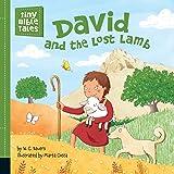 David and the Lost Lamb (Tiny Bible Tales)