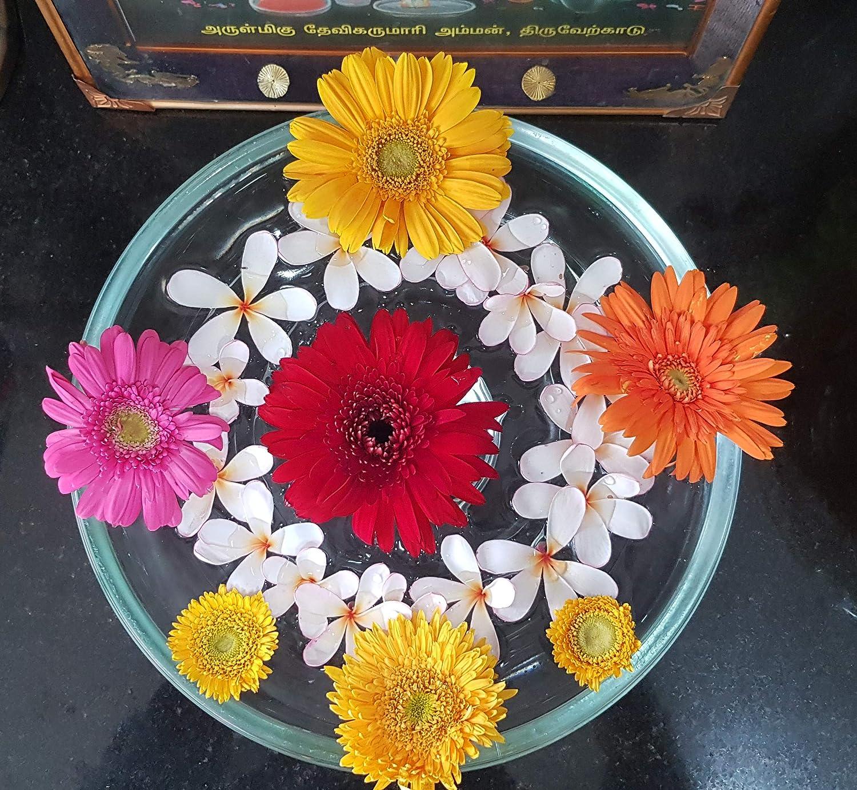 Glass Finish Modern Urli Bowl For Decorative