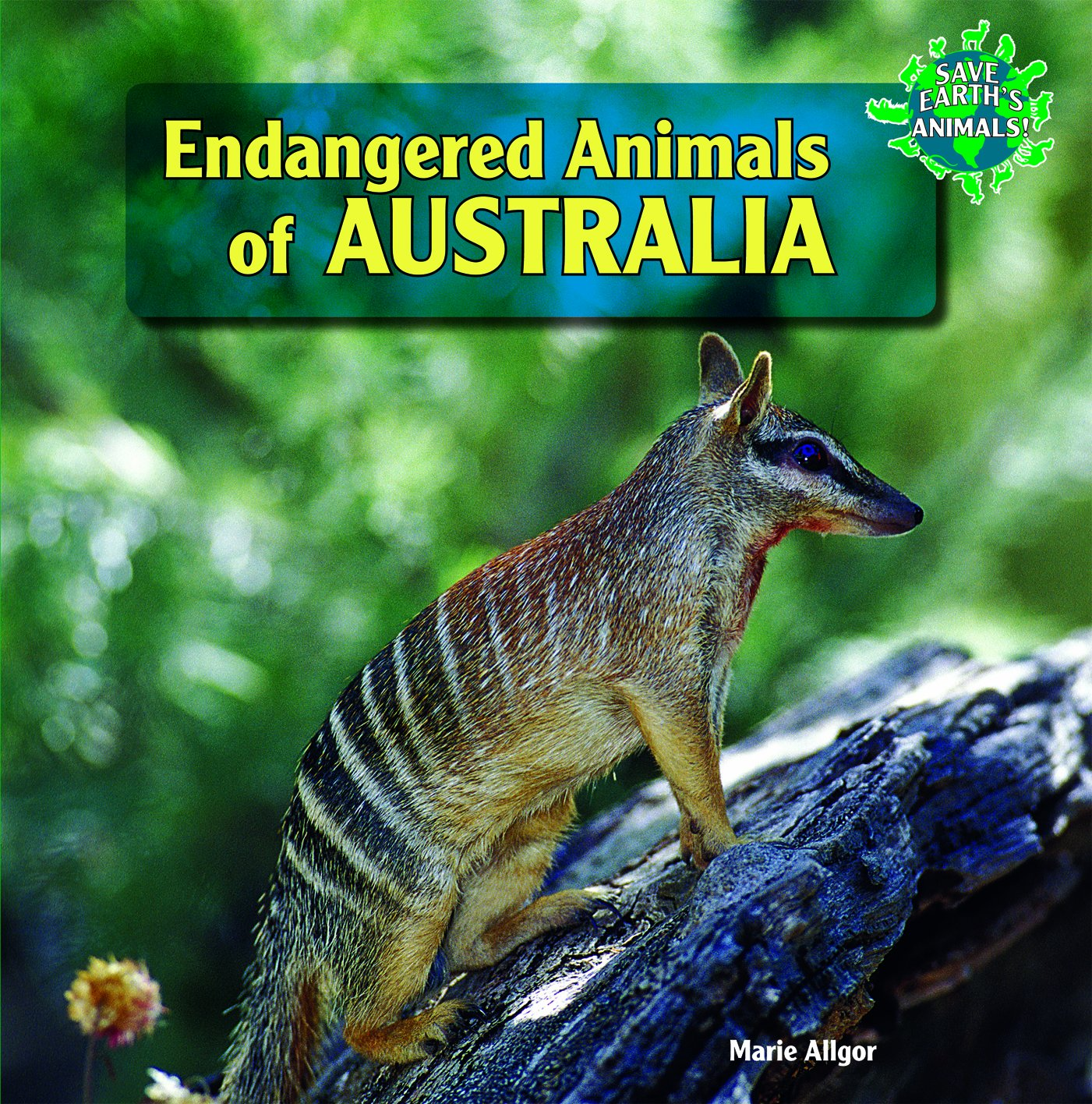 Download Endangered Animals of Australia (Save Earth's Animals! (Paperback)) PDF Text fb2 book