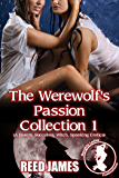 The Werewolf's Passion Collection 1: (A Harem, Succubus, Witch, Spanking Erotica)