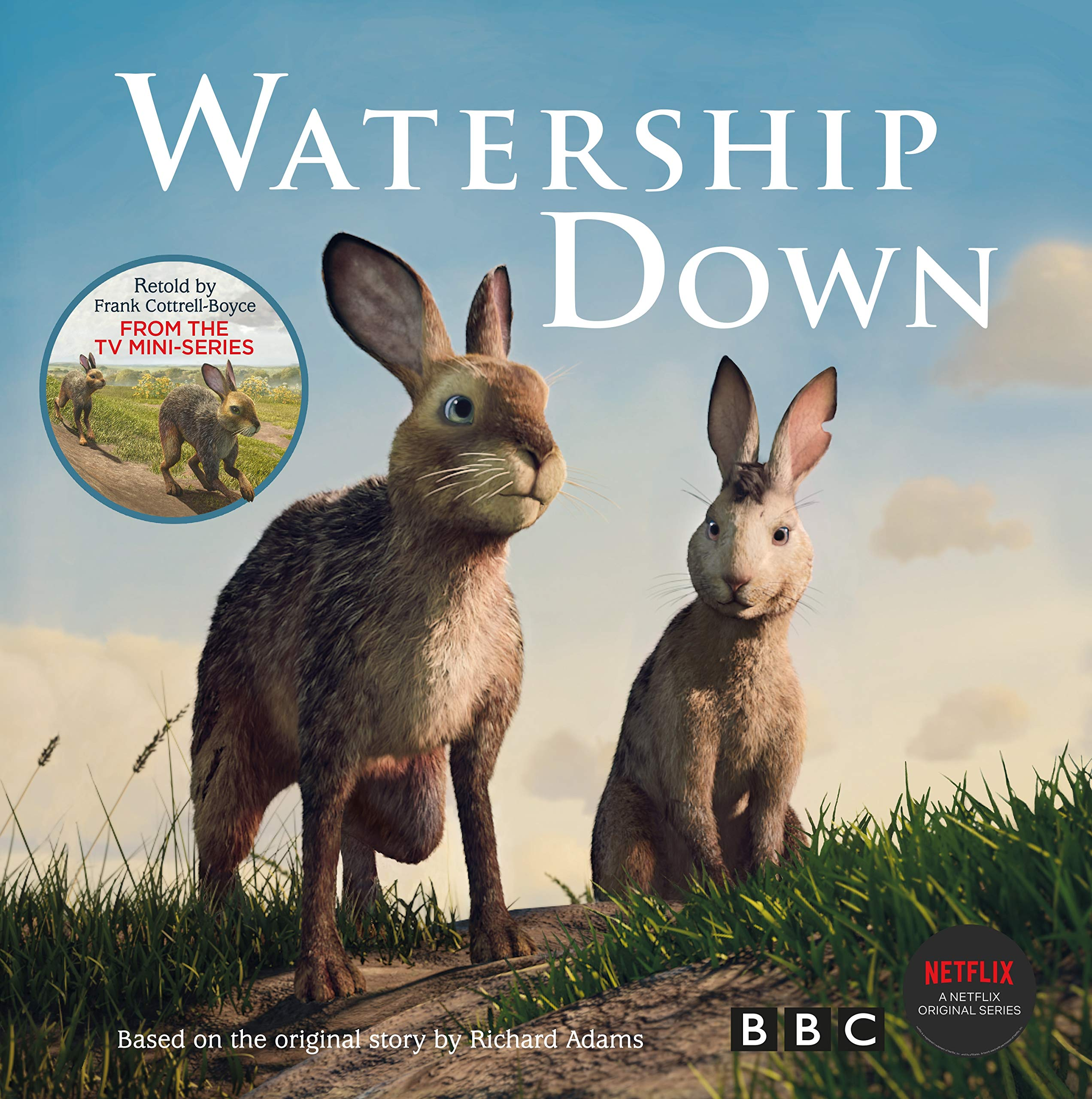Watership Down: Gift Picture Storybook: Amazon co uk: Frank Cottrell