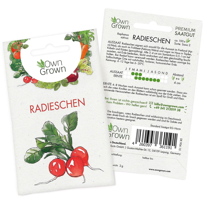 2 Tüten Radies Riesenbutter Radieschen Salat Gemüse 500 Samen Saat Beet Aussaat