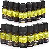 Aceites Esenciales Woodland Natural + Libro Aromaterapia (16 botellas de 10ml) 100% Puros Calidad Terapéutica | Baño, Masaje, Difusores | Lavanda, Menta, Árbol de Té | Relajación, Meditación
