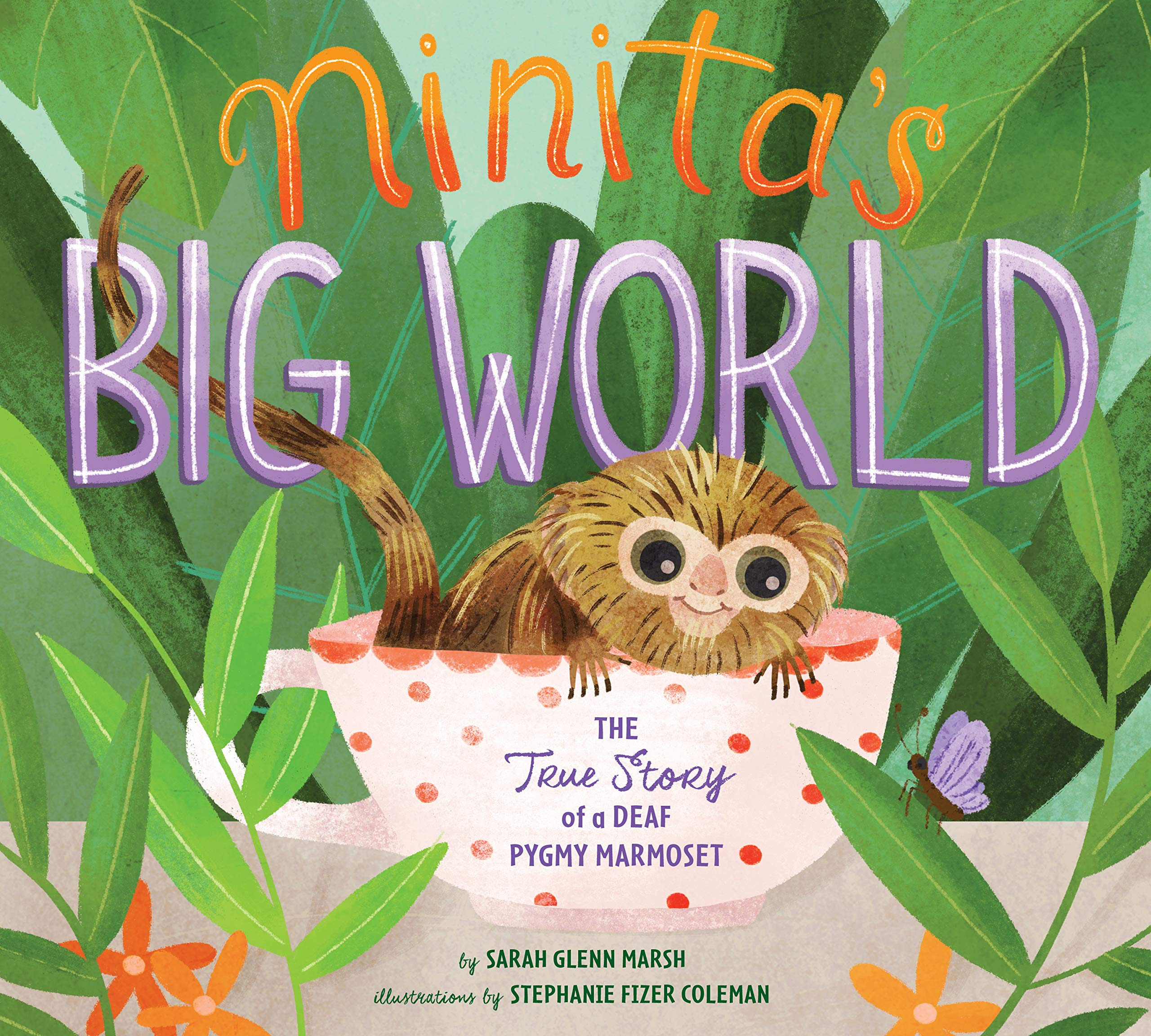 Image result for ninita's big world amazon