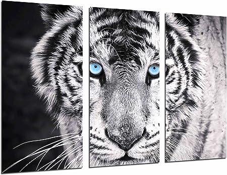 Cuadros Cámara Cuadro Fotográfico Tigre Blanco Y Negro Ojos Azules Animales 97 X 62 Cm Xxl Multicolor Amazon Es Hogar