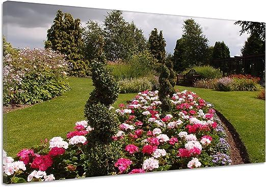 Planta Flores Árboles Jardín Paisaje lienzo Póster Impresión de aa5128, 60x40: Amazon.es: Hogar