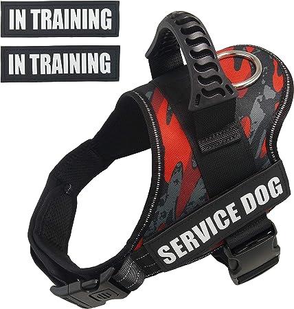 Dihapet Dog Harness