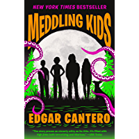 Meddling Kids: A Novel book cover
